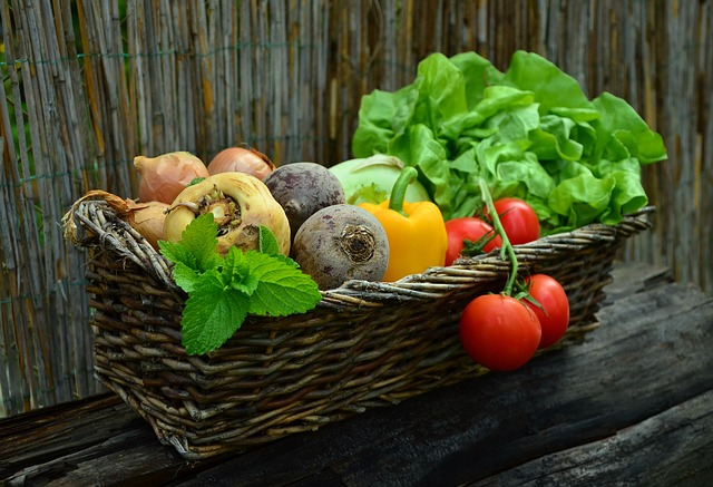 Tips for Planting Your First Vegetable Garden